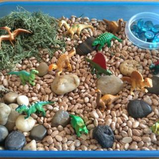 Dinosaur sensory boxes
