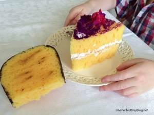 Pretend sponge cake