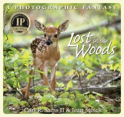 Lost in the Woods. Montessori-friendly books selection. Featured by Special Learning House. www.speciallearninghouse.com..jpg