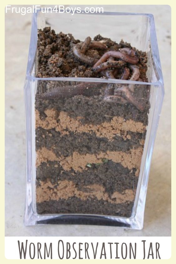 Worm observation jar. Featured by Special Learning House. www.speciallearninghouse.com.