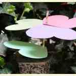 Fun flower craft