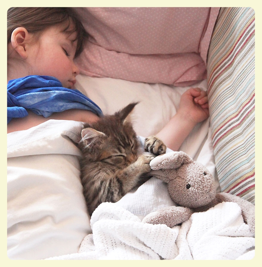 Iris Grace & Thula her therapy cat. Sleeping together. The special bond between animals and autistic children. Featured by Special Learning House. www.speciallearninghouse.com.jpg