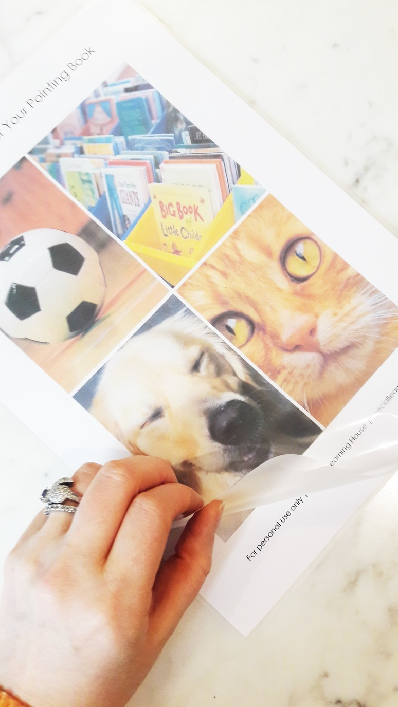 Free printable pointing book for kids. Increase interaction, pointing skills and vocabulary with your child with autism or other special needs.   speciallearninghouse.com