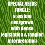 Special Needs Jungle definition
