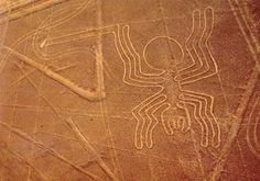 Nazca Line portraying the spider. (Photo credit: Pinterest.)