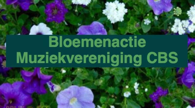 bloemenactie-CBS
