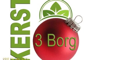 3borg kerst