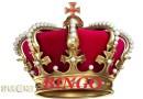 Royalty bingo bij VV Poolster