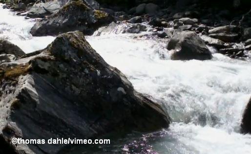 Natur_Thomas_Dahle_vimeo_COK