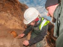 Orkney storm reveals ancient bones.