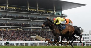 18 March 2016; Ibis Du Rheu, with Jack Sherwood up, on their way to winning the Martin Pipe Conditional Jockeys' Handicap Hurdle. Prestbury Park, Cheltenham, Gloucestershire, England. Picture credit: Cody Glenn / SPORTSFILE (Photo by Sportsfile/Corbis via Getty Images)