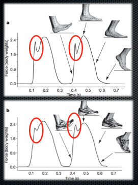 The-concept-of-shoes-is-that-they-spread-that-impact-out