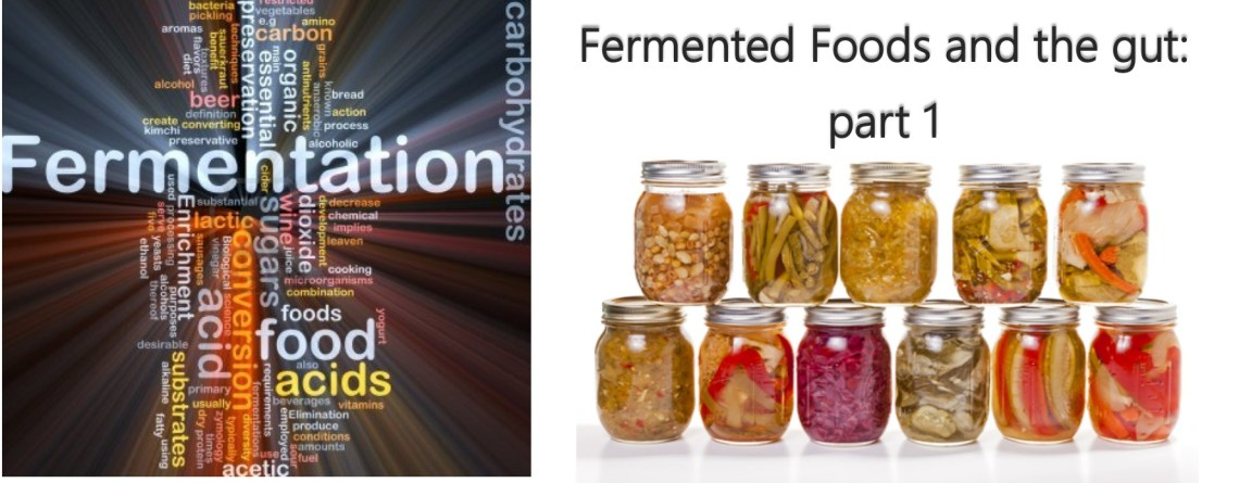 Fermented Foods and Gut Health – part one