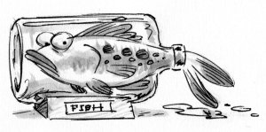 cartoon of a fish in a bottle