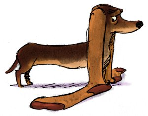 sock eared dachshund cartoon sketch