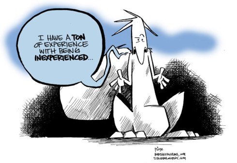 experience inexperience