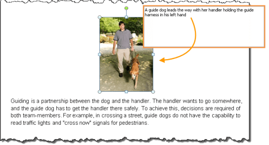 example of correct use of alt text