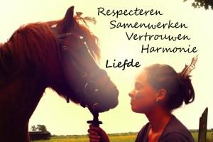 Harmonie, grondwerk, dressuurinstructie, dressuur, natural horsemanship, nh