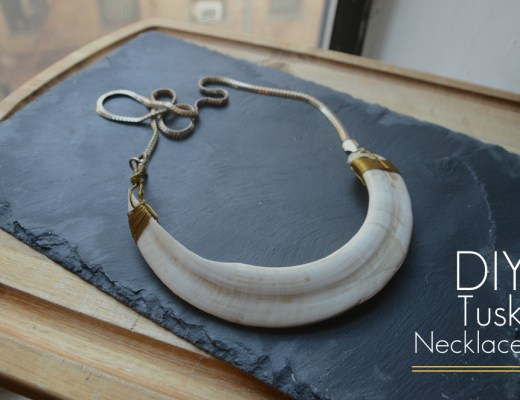 DIY tusk necklace with a tooth
