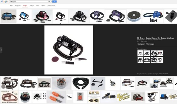 Google-Image-Search-new