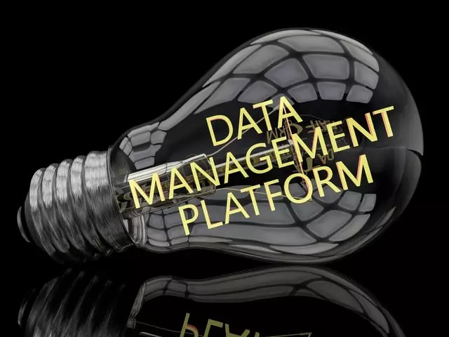 Data Management Platform - lightbulb on black background with text in it. 3d render illustration.