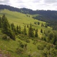 PLANINA MOKRA Šekular - Rmuše - Kula - vrh Usovište (11,5 km)