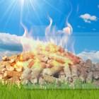 Le Biomasse sono sicure?