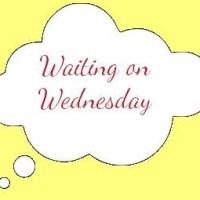 Waiting on Wednesday - Melanie Raabe: Die Falle