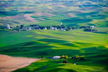 A photograph of the evening views of the Spring Palouse farm lands in Whitman County near Colfax, Washington as seen from Steptoe Butte State Park.