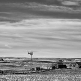 Old Farm, Baseline Road, Waterville, Washington, 2013