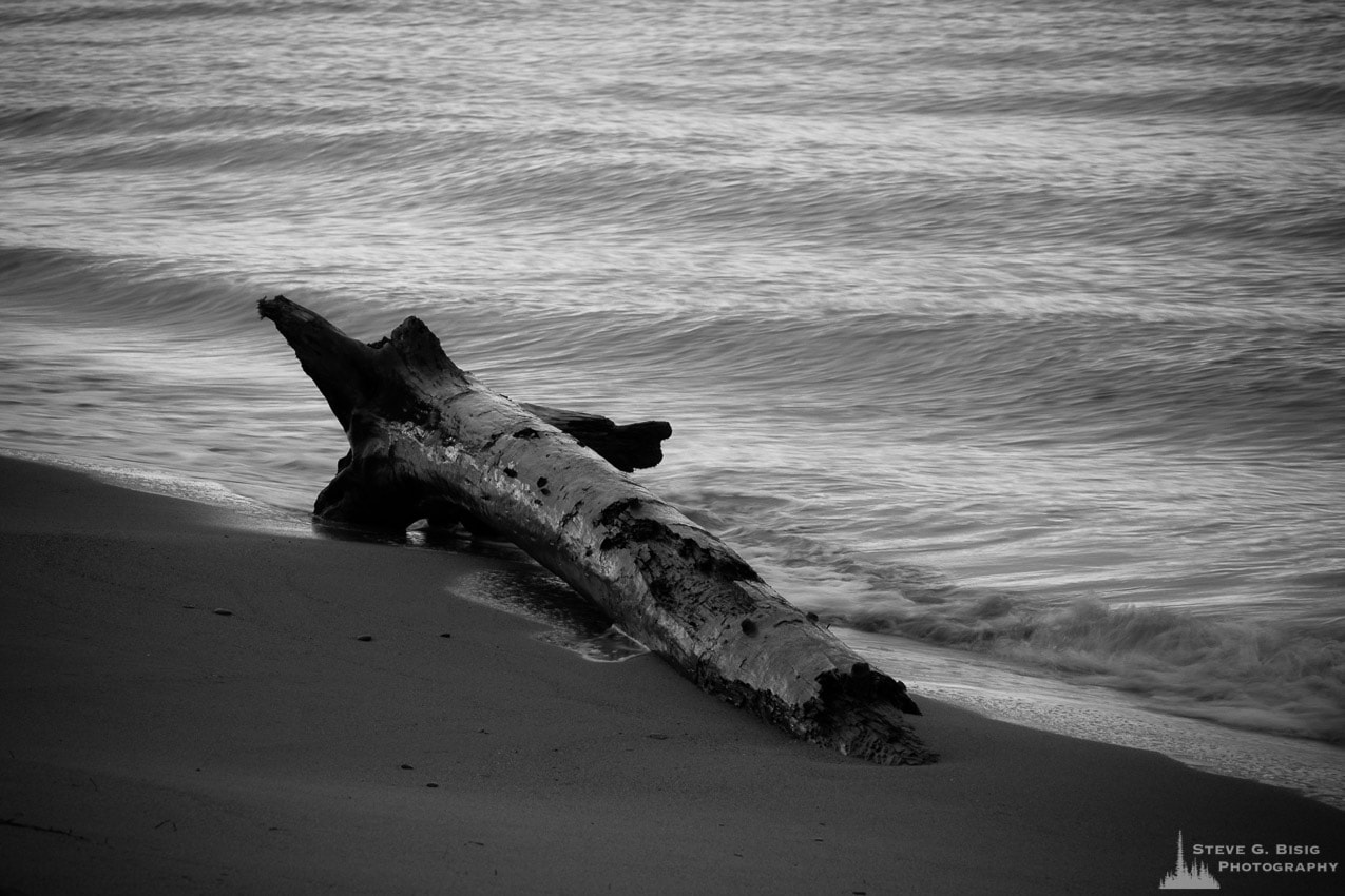 Washed Up, Deception Pass State Park, Washington, 2016