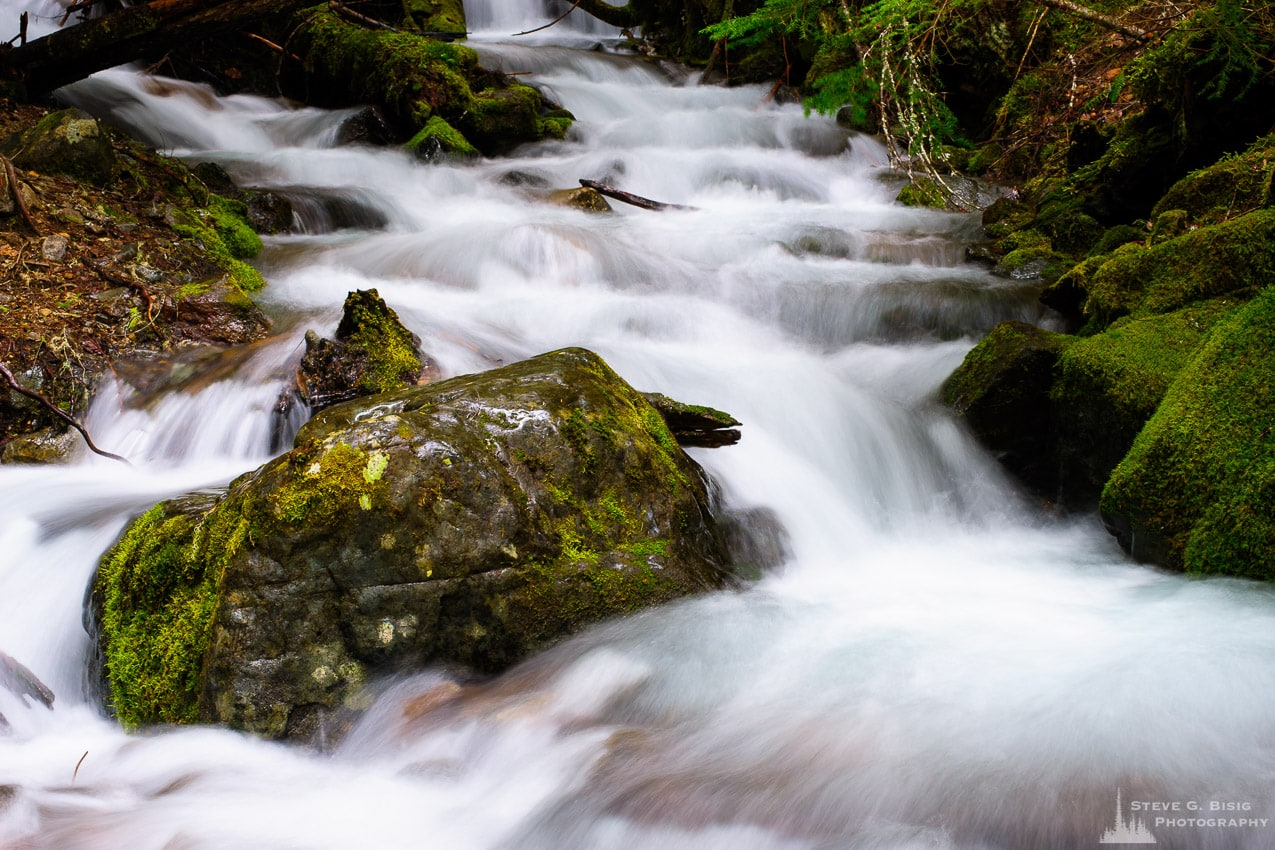 Crystal Creek, Mount Rainier National Park, Washington, 2016