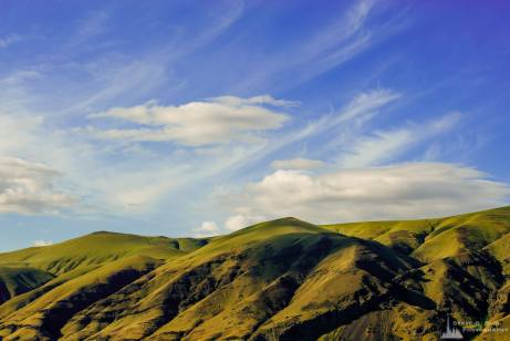 A photograph of the green springtime hills and sky near Priest Rapids Dam by Desert Aire, Washington.