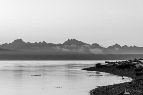 A black and white landscape photograph of Cascade Mountains in the early morning Summer light over Skagit Bay as seen from Borgman Road on Whidbey Island near Oak Harbor, Washington.