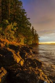 A landscape photograph of the evening light shining on the forest and coastline of Washington Park in Anacortes, Washington.