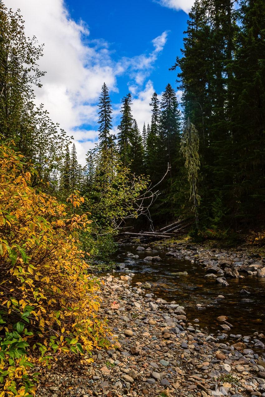 Little Naches River, Yakima County, Washington, 2016