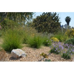 Small Crop Of Best Landscape Designers