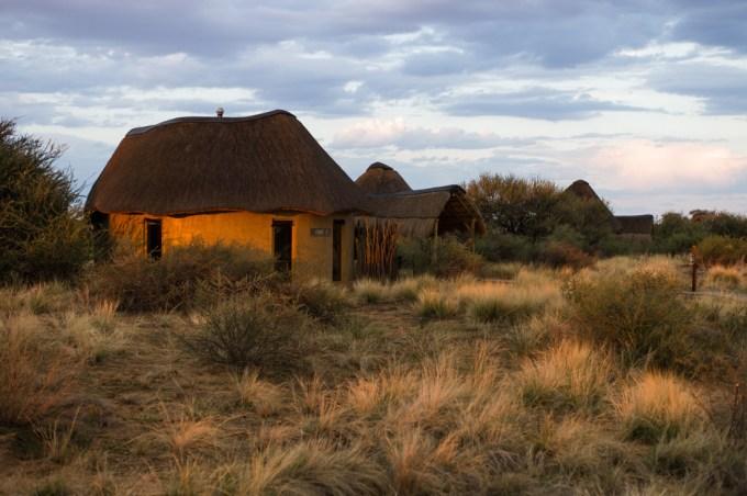 2 Kalahari desert M9 Summilux 50