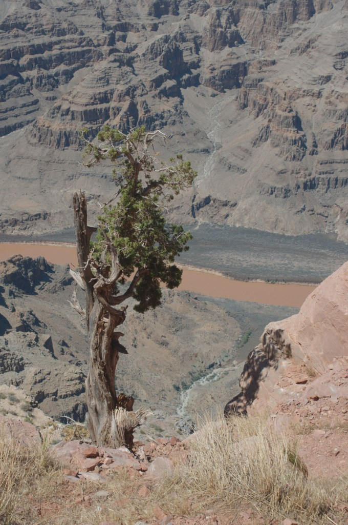 canyonedgeorig