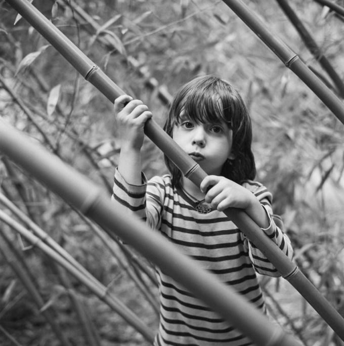 Noah bamboo - Rolleiflex