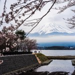 Sakura and Mount Fuji