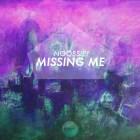 Noobsie - Missing Me
