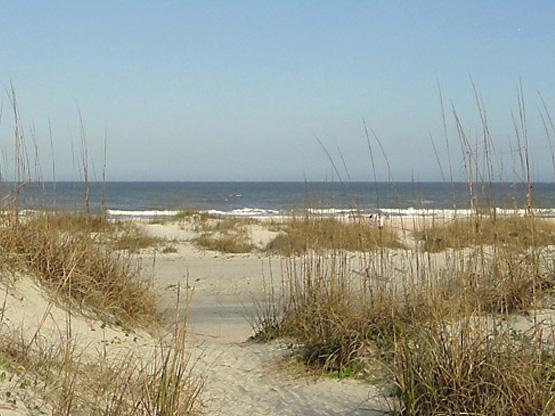 sand dunes at St. Augustine Beach