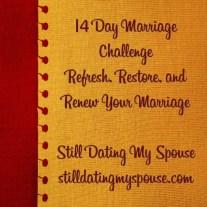 SDMS 14 Day Challenge
