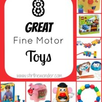 Fine Motor Toys Used in Occupational Therapy
