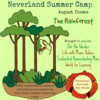 August Neverland Summer Camp (Preschool & Kindergarten) Calendar- Rainforest Theme