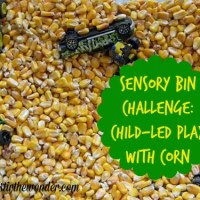 Child-led Play with Corn