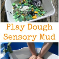 Play Dough Sensory Mud