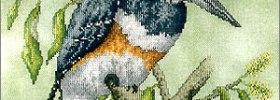 Belted Kingfisher Bird Cross Stitch