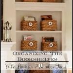 ORGANIZING THE BOOKSHELVES